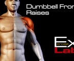 Front Raises with Dumbbells : Shoulder Exercises