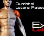 Dumbbell Lateral Raises : Shoulder Exercises