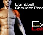 Dumbbell Shoulder Press : Shoulder Exercises