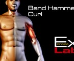 Hammer Curls ( Band ) : Bicep Exercises