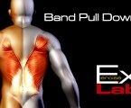 Lat Pulldown with Band : Back Exercises