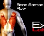 Seated Row with Band : Back Exercises