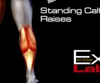 Standing Calf Raise : Calf Exercises
