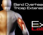 Band Overhead Tricep Extension : Triceps Exercises
