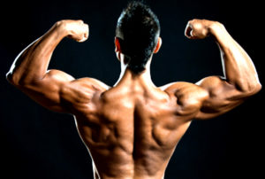 how to get bigger biceps at home