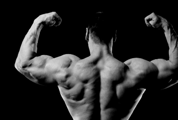 3 Best Body-Weight BICEP Exercises