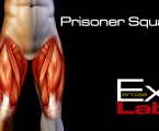 Prisoner Squat : Leg Exercises ( Quadriceps )