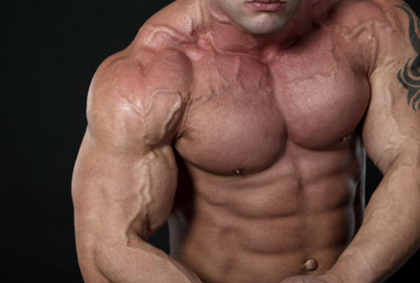 the effects of using the anabolic steroids What really interests me, though, is the effects of anabolic steroids today's professional bodybuilders as well as nfl players, wrestlers, etc use steroids, and are bigger than ever i know that steroids give you extreme muscular growth, but are there safe ways to take this highly anabolic substance.