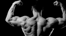 3 Best Body-weight Bicep Exercises for Mass
