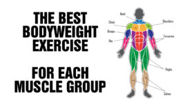 Best Bodyweight Exercise For Each Muscle Group