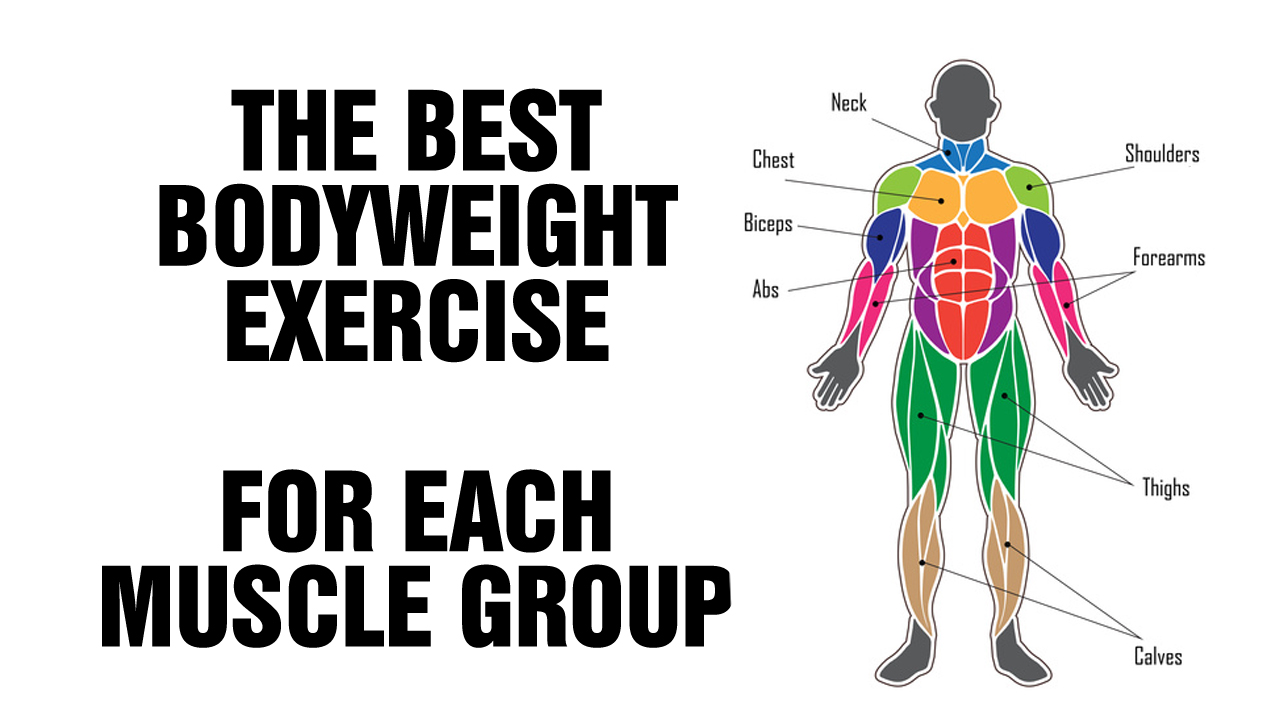 Best Bodyweight Exercise For Each Muscle Group - SixPackFactory